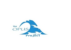 Opus new